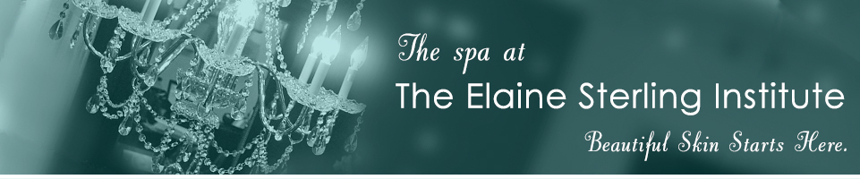 Spa Services at Elaine Sterling Institute